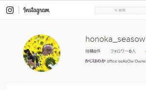 insta_honoka