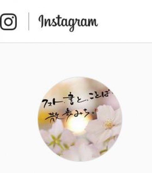 Instagram…始めました(^_^;)