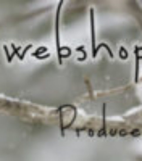 webshopのアドレス変更です!